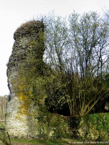Château de Gannes