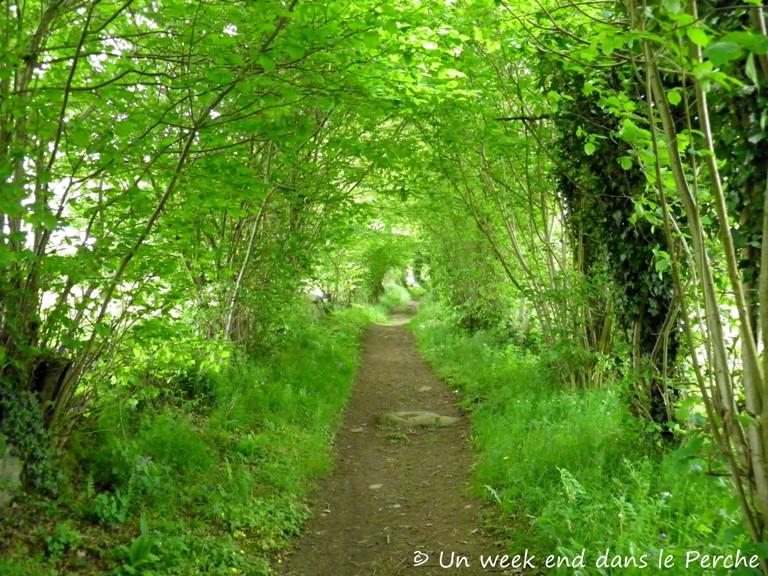 Sentier du Granite - La Roche d'Oëtre